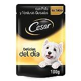 Cesar Comida Húmeda para Perros, Sabor Pollo y Verduras en Salsa (Pack de 24 bolsitas x 100g)